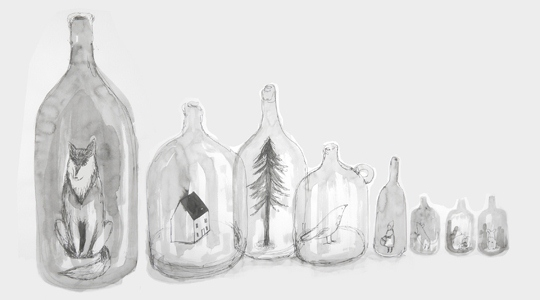 A drawing of strange objects in bottles by Sarah Lacey
